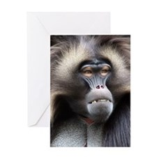 Gelada Baboon Greeting Card
