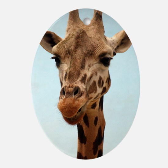 Giraffee Oval Ornament