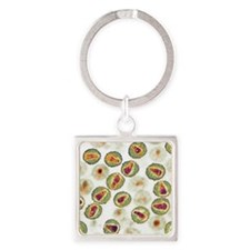 HIV particles, TEM Square Keychain