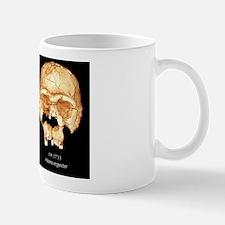 Hominid skulls, 3D computer images Mug