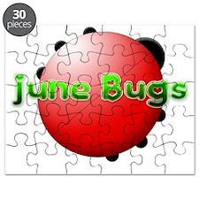 June Bugs 2012 Puzzle