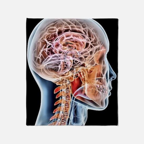 Internal brain anatomy, artwork Throw Blanket
