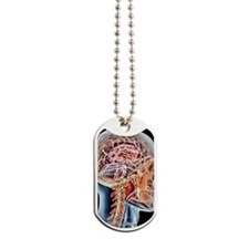 Internal brain anatomy, artwork Dog Tags