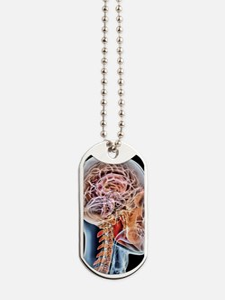 Internal brain anatomy, artwork Dog Tags