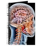 Neuropsychology Journals & Spiral Notebooks
