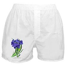 Iris pallida 'Aurea Variegata' Boxer Shorts