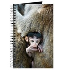 Long-tailed macaque baby Journal
