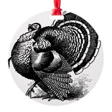 Black and White Turkey in Strut Ornament
