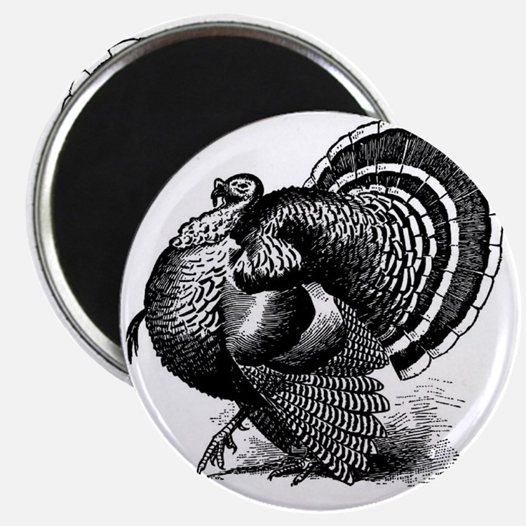 Black and White Turkey in Strut Magnet