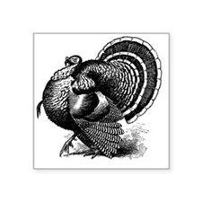 "Black and White Turkey in S Square Sticker 3"" x 3"""