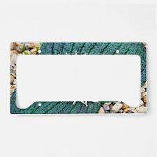 Massonia pustulata License Plate Holder