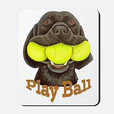 Play Ball, Labrador with Tennis Balls Mousepad