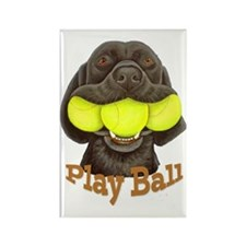 Play Ball, Labrador with Tennis B Rectangle Magnet