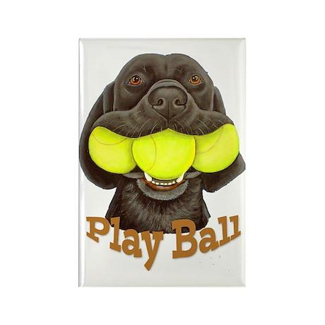 Play Ball, Labrador with Tennis B Rectangle Magnet