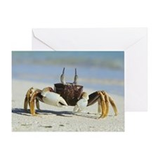 Horned ghost crab Greeting Card
