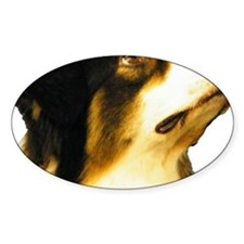 Aussie Head Decal