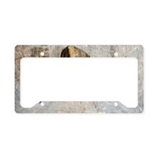 House spider License Plate Holder