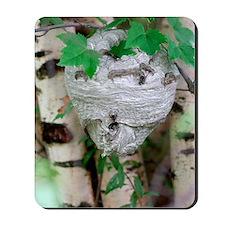 Hornet nest Mousepad