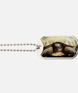 Horsfield tortoise Dog Tags