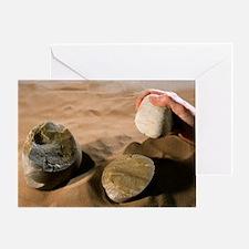 Olduwan stone tools Greeting Card