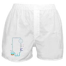 Miller-Urey experiment, artwork Boxer Shorts