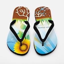Photosynthesis, illustration Flip Flops