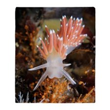 Nudibranch eating hydrozoa Throw Blanket