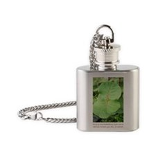 El Morro Plant Flask Necklace