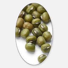 Mung beans Decal