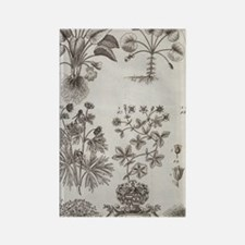 Oxfordshire plants, 18th century  Rectangle Magnet