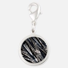 Orthoceras fossils Silver Round Charm