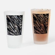 Orthoceras fossils Drinking Glass