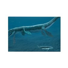 Mosasaurus Rectangle Magnet