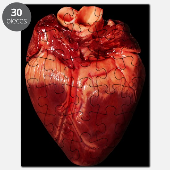 Pig's heart Puzzle