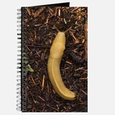 Pacific banana slug Journal