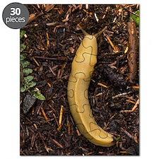 Pacific banana slug Puzzle