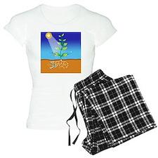 Photosynthesis, artwork Pajamas