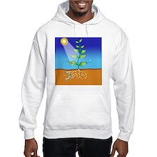 Photosynthesis, artwork Hoodie