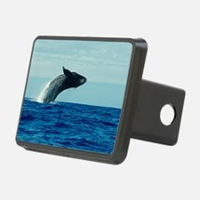 Humpback whale breaching Hitch Cover