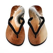 Icelandic Horse Flip Flops