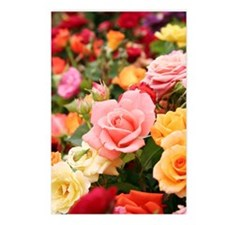 Roses Postcards (Package of 8)