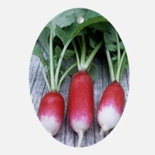 Radishes (Raphanus 'French Breakfast Oval Ornament