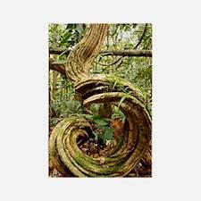 Rainforest undergrowth Rectangle Magnet