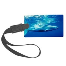 Humpback whale baby Luggage Tag