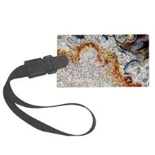 Polished 'crazy lace' agate Luggage Tag