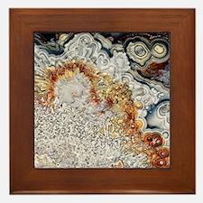 Polished 'crazy lace' agate Framed Tile