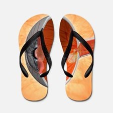 Retinal implant, artwork Flip Flops