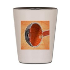 Retinal implant, artwork Shot Glass