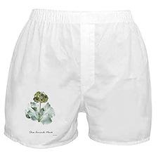 Primula auricula 'Monk' Boxer Shorts