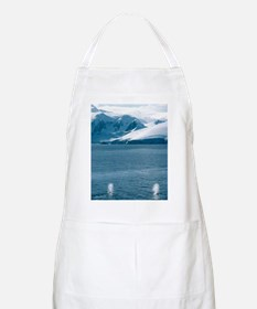 Humpback whales exhaling Apron